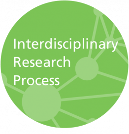 Interdisciplinary Research Process